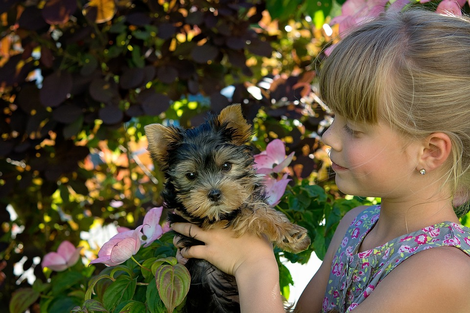 girl-with-puppy