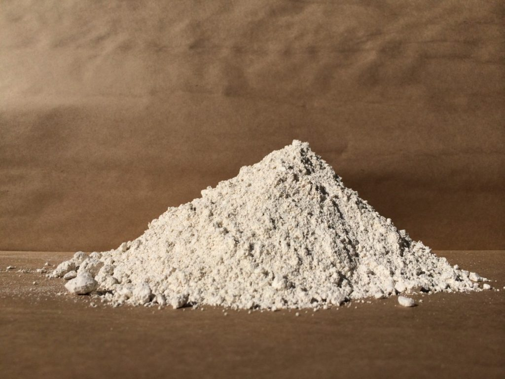 Diatomaceous Earth safe