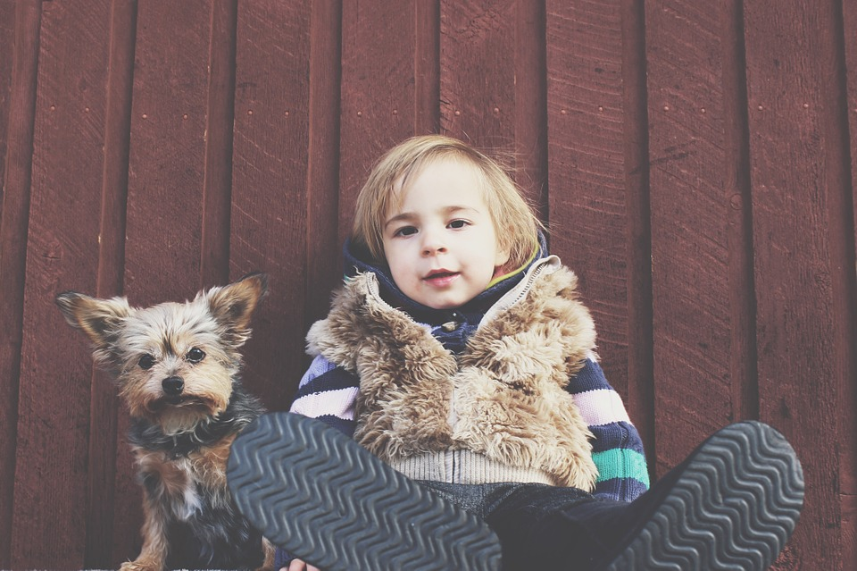 10 small dog breeds that are great with children