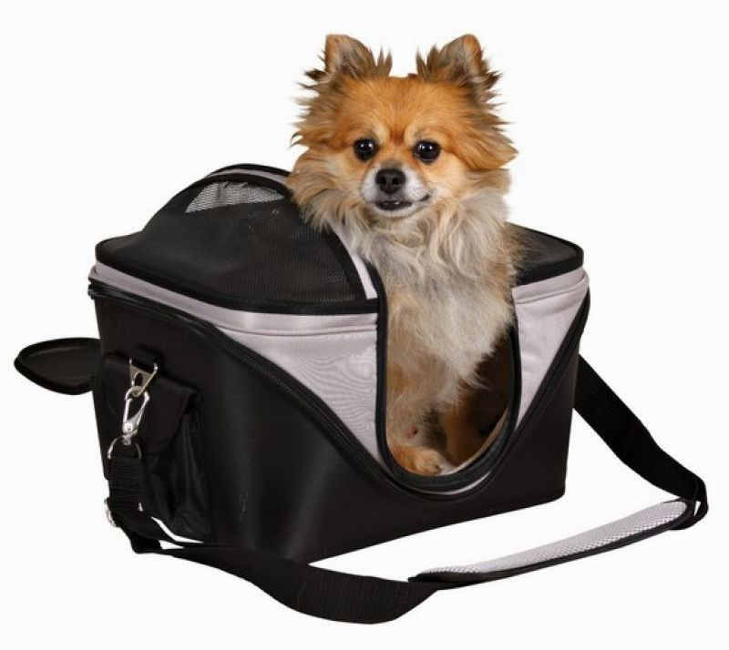 Tips To Travel With Your Dog Safely - Pack Your Pooch In A Crate